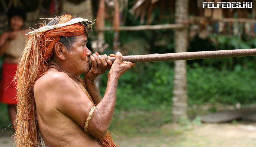 yahua_blowgun_amazon_iquitos_peru-need-to-credit-jialianggao-www-peace-on-earth-org